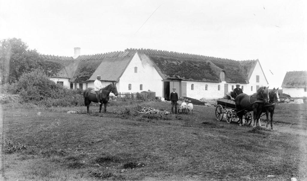 10972.32  Ukendt gård, Fotograf H. Barby. Er der et bud på hvor det er henne ?