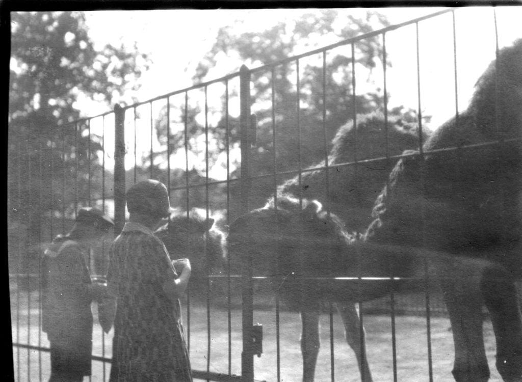 59.28  Zoologisk Have 1928 2000 Frederiksberg