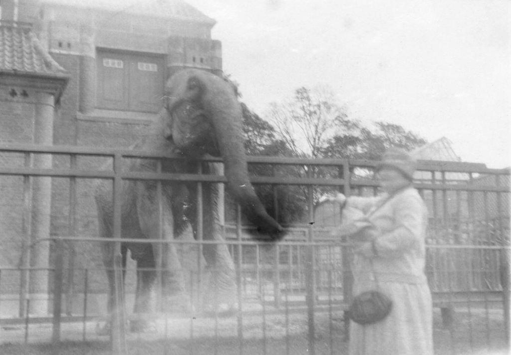 59.31  Zoologisk Have 1928 2000 Frederiksberg  K-O 21.12.17