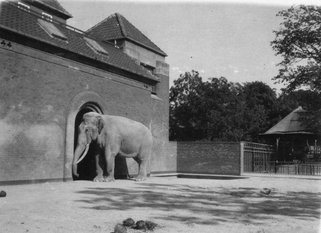 59.33  Zoologisk Have 1928 2000 Frederiksberg   K-O 21.12.17