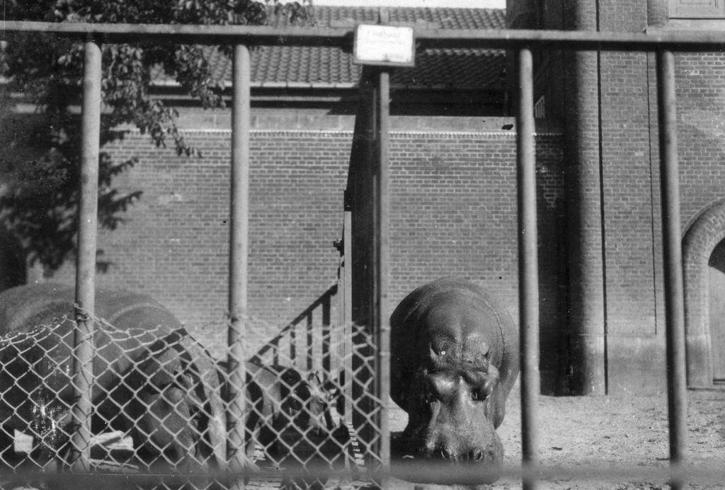 59.39  Zoologisk Have 1928 2000  K-O 21.12.17