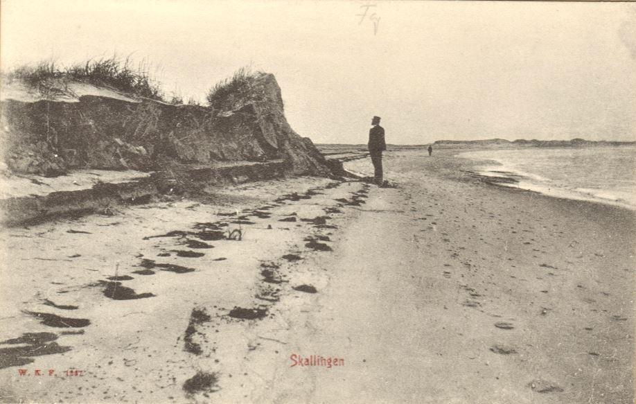 71.127  Skallingen ca. 1909. Vandbygger Peter Frederik Sletting besigtiger skader efter stormen. 7700