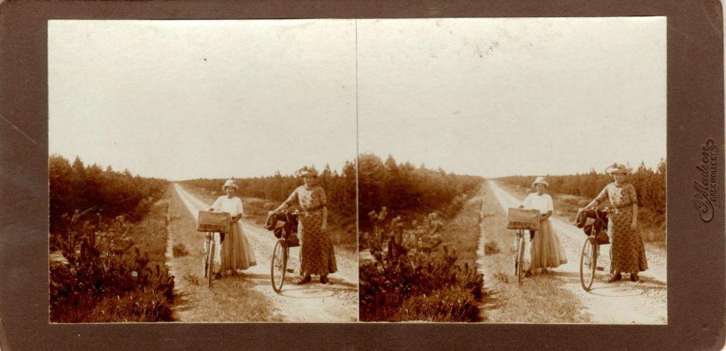 11432.22  Ud over den beplantede Hede.  Cirka 1914  Fotograf Peter Møller, Rask Møll