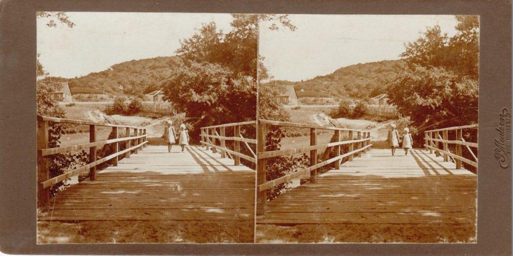 11432.24  Parti fra Vissingkloster, Skanderborg 8660.  Cirka 1914  Fotograf Peter Møller, Rask Mølle