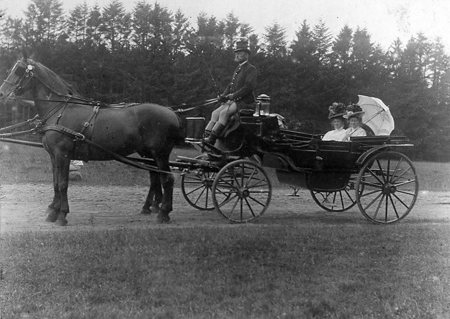 30.83 Skovtur, august 1908