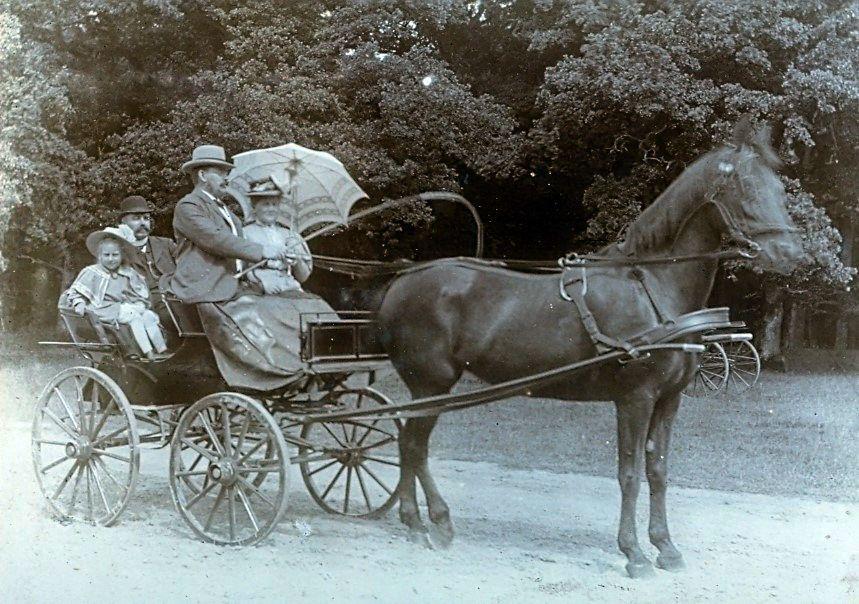 30.84 Skovtur, august 1908. Herman Ebert leger kusk, hustru Franziska med parasol og yngste datter i bagsædet måske sammen med kusken.