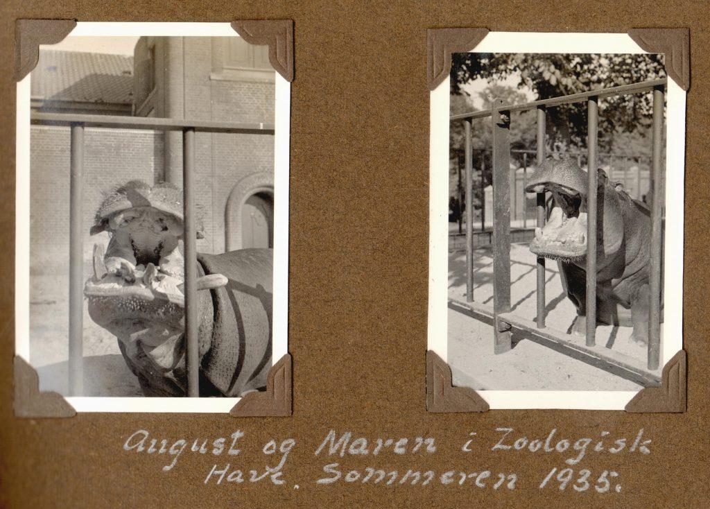 70.91-70.92 August og Maren, Zoo 1935